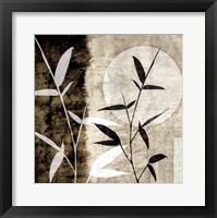 Framed Bamboo Moon I