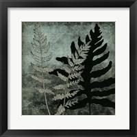 Framed Illuminated Ferns I