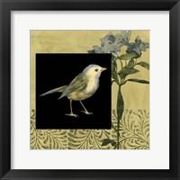 Bird Fantasy I Framed Print