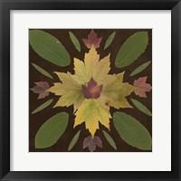 Framed Kaleidoscope Leaves IV