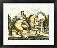 Framed Equestrian Training I