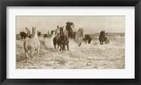 Framed Horses Bathing
