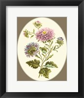 Framed Antique Bouquet II