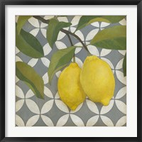 Framed Fruit and Pattern I