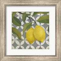 Framed Fruit and Pattern I