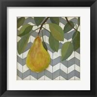 Framed Fruit and Pattern II
