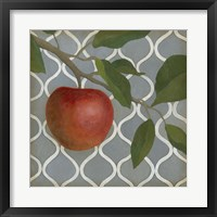 Framed Fruit and Pattern III