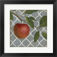 Fruit and Pattern III Framed Print