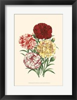Framed Bountiful Bouquet IV