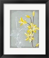 Framed Floral Echo II