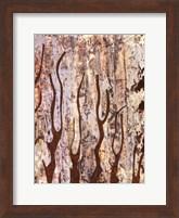 Framed Butterfly Tree II