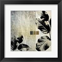 Framed Leaves & Stems II