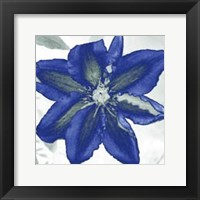Framed Indigo Star I