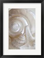 Framed Pearlesce III