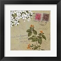 Framed Postage II