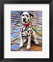 Framed Dalmatian Puppy