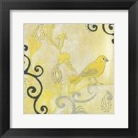 Framed Canary I