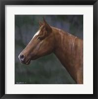 Framed Quarter Horse