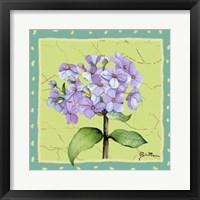 Framed Whimsical Flowers III