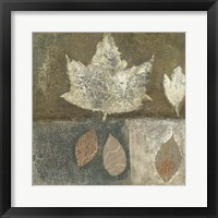 Framed Neutral Leaves I