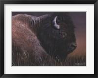 Framed American Icon- Bison