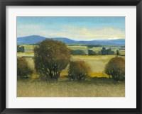 Verdant Meadow II Framed Print