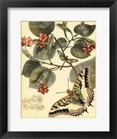 Whimsical Butterflies I Framed Print