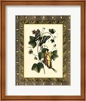 Framed Leather Framed Butterflies II