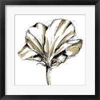 Framed Tulip Sketch IV