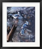 Framed Touch of Blue