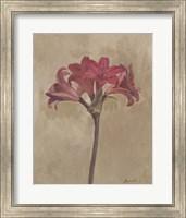 Framed Blooms & Stems III