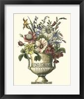Framed Floral Splendor I