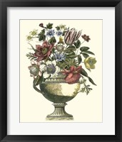 Framed Floral Splendor II