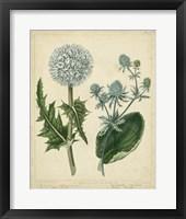 Framed Cottage Florals III