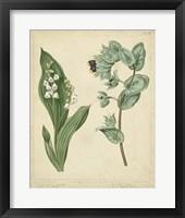 Framed Cottage Florals IV