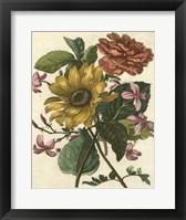 Framed Floral Posy I