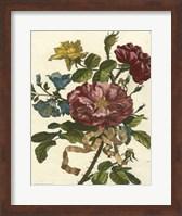 Framed Floral Posy II