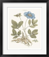 Framed Bashful Blue Florals I