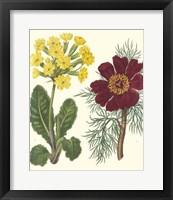 Framed Gardener's Delight II