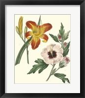 Framed Gardener's Delight IV