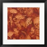 Framed Nautilus in Rust I