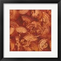 Framed Nautilus in Rust II
