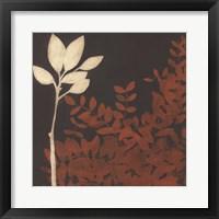 Garden Cameo II Framed Print