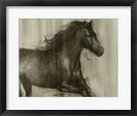Framed Dynamic Stallion I