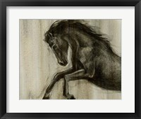 Framed Dynamic Stallion II