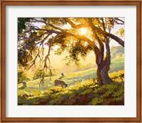 Framed Restful Radiance