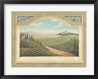 Framed Vineyard Window I