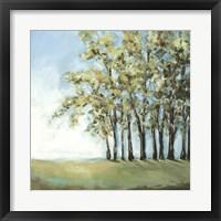 Framed Tree in Summer