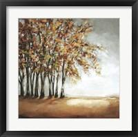 Framed Tree in Fall