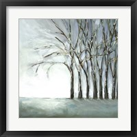 Framed Tree in Winter